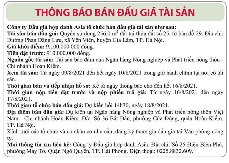 Ngày 18/8/2021, đấu giá quyền sử dụng đất tại huyện Gia Lâm, Hà Nội ảnh 1