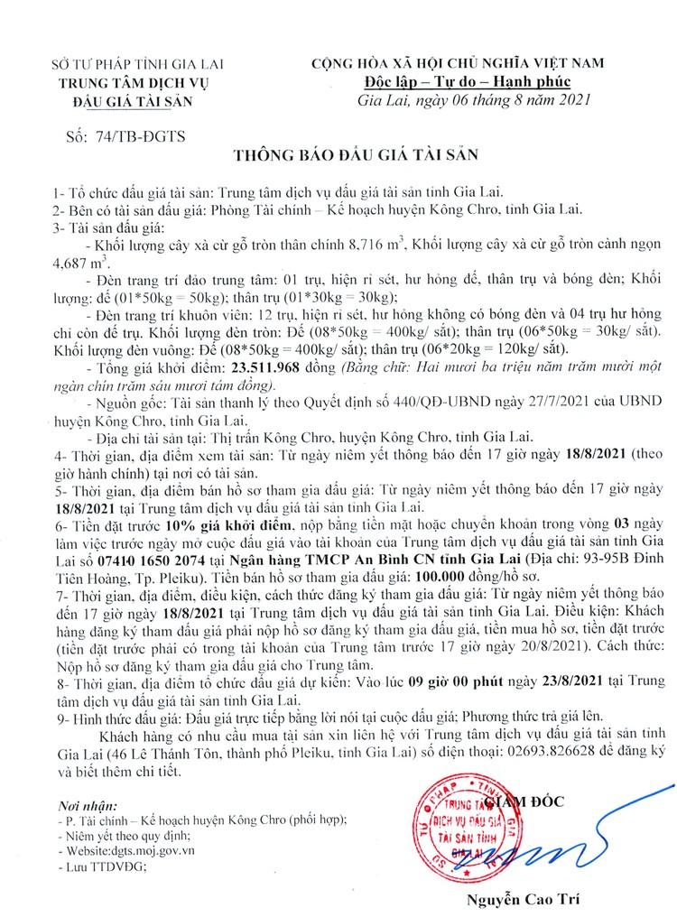 Ngày 23/8/2021, đấu giá cây xà cừ, đèn trang trí tại tỉnh Gia Lai ảnh 3