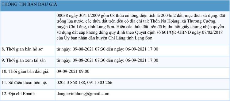 Ngày 9/9/2021, đấu giá quyền sử dụng đất tại huyện Chi Lăng, tỉnh Lạng Sơn ảnh 2