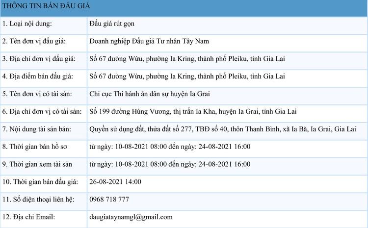 Ngày 26/8/2021, đấu giá quyền sử dụng đất tại huyện Ia Grai, tỉnh Gia Lai ảnh 1