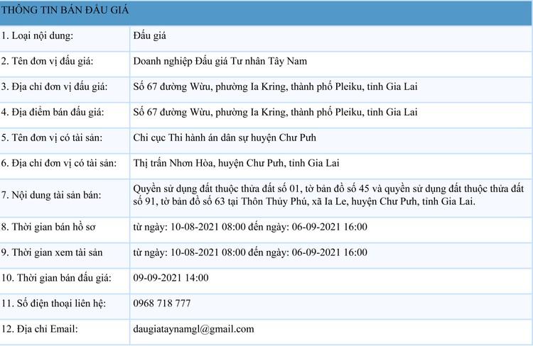 Ngày 9/9/2021, đấu giá quyền sử dụng đất tại huyện Chư Pưh, tỉnh Gia Lai ảnh 1