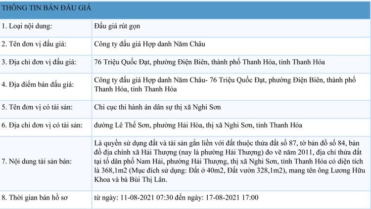 Ngày 19/8/2021, đấu giá quyền sử dụng đất tại thị xã Nghi Sơn, tỉnh Thanh Hóa ảnh 1