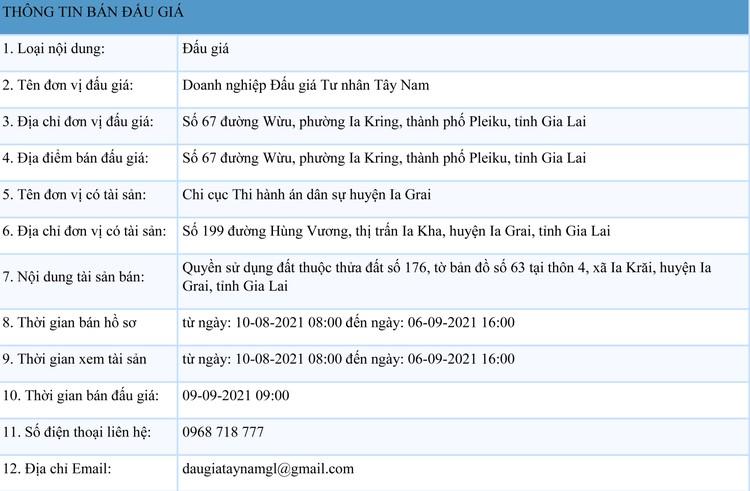 Ngày 9/9/2021, đấu giá quyền sử dụng đất tại huyện Ia Grai, tỉnh Gia Lai ảnh 1