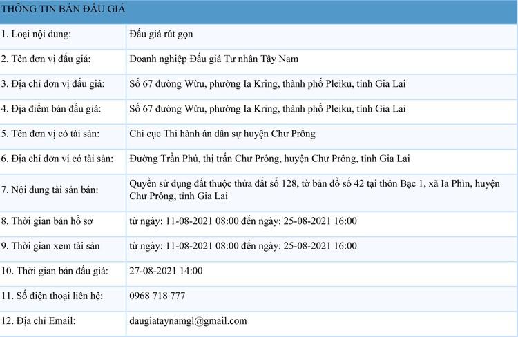 Ngày 27/8/2021, đấu giá quyền sử dụng đất tại huyện Chư Prông, tỉnh Gia Lai ảnh 1