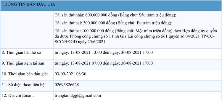 Ngày 3/9/2021, đấu giá quyền sử dụng đất tại huyện Đak Đoa, tỉnh Gia Lai ảnh 3
