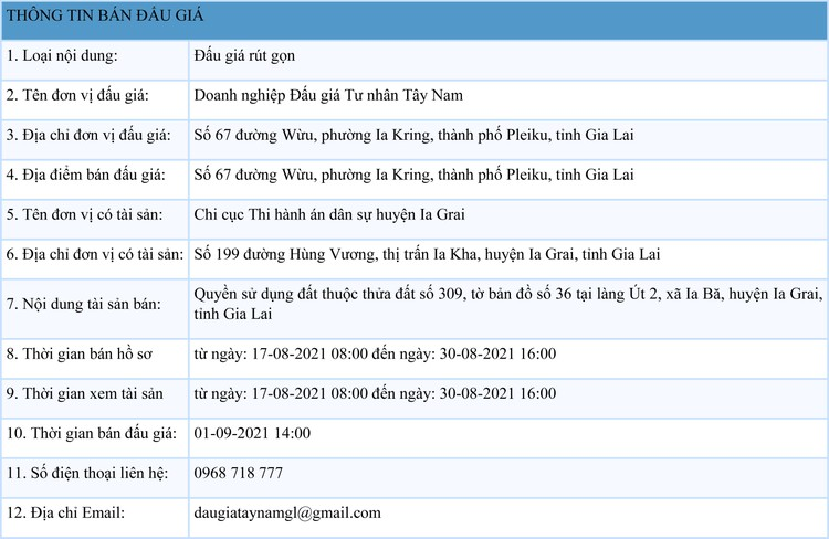 Ngày 1/9/2021, đấu giá quyền sử dụng đất tại huyện Ia Grai, tỉnh Gia Lai ảnh 1