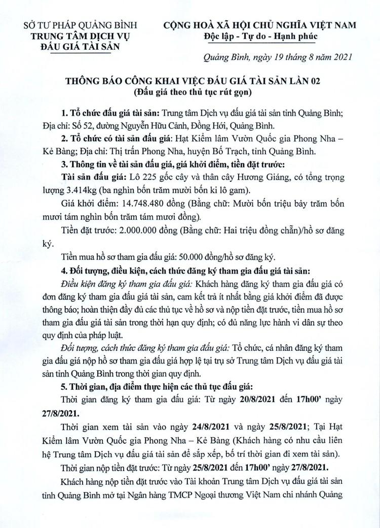 Ngày 30/8/2021, đấu giá lô 225 gốc cây và thân cây Hương Giáng tại tỉnh Quảng Bình ảnh 2
