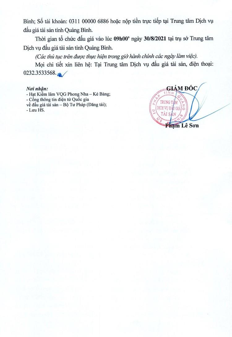 Ngày 30/8/2021, đấu giá lô 225 gốc cây và thân cây Hương Giáng tại tỉnh Quảng Bình ảnh 3