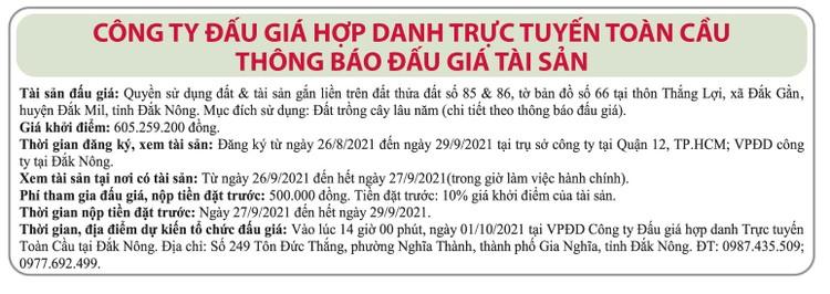 Ngày 1/10/2021, đấu giá quyền sử dụng đất tại huyện Đắk Mil, tỉnh Đắk Nông ảnh 1