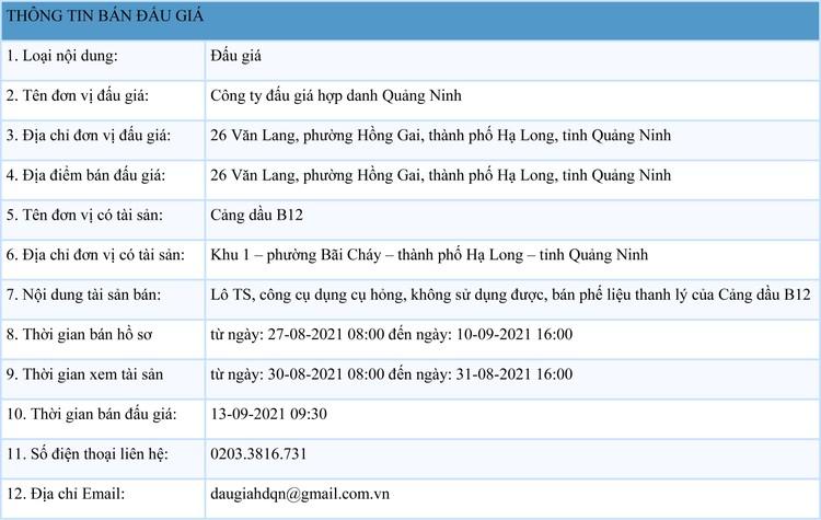 Ngày 13/9/2021, đấu giá lô tài sản phế liệu thanh lý tại tỉnh Quảng Ninh ảnh 1
