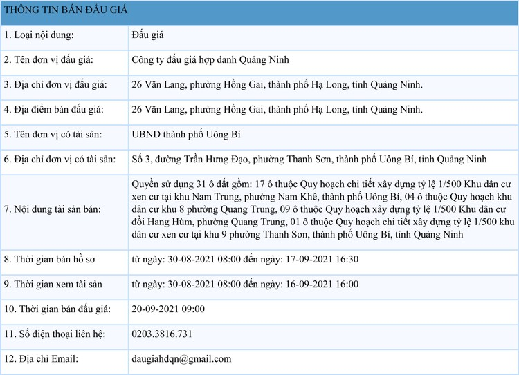Ngày 20/9/2021, đấu giá quyền sử dụng 31 ô đất tại thành phố Uông Bí, tỉnh Quảng Ninh ảnh 1