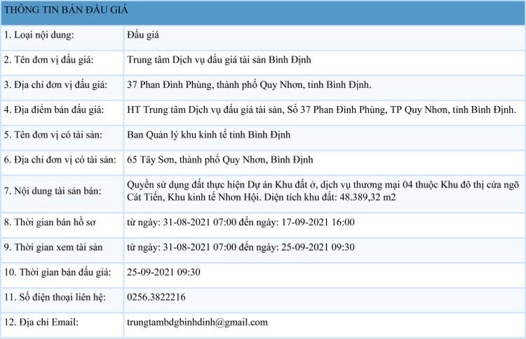 Ngày 25/9/2021, đấu giá quyền sử dụng 48.389,32 m2 đất tại Khu kinh tế Nhơn Hội, tỉnh Bình Định ảnh 1
