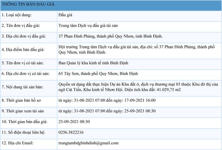 Ngày 25/9/2021, đấu giá quyền sử dụng 41.029,75 m2 đất tại Khu kinh tế Nhơn Hội, tỉnh Bình Định ảnh 1