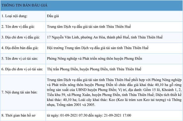 Ngày 24/9/2021, đấu giá quyền khai thác gỗ rừng trồng sản xuất tại tỉnh Thừa Thiên Huế ảnh 1