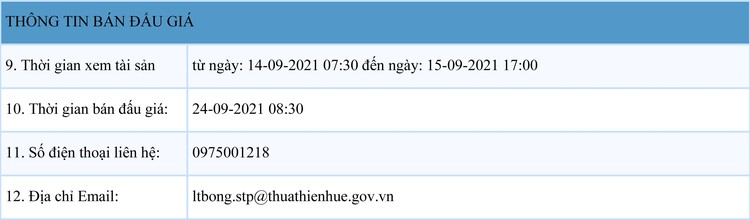 Ngày 24/9/2021, đấu giá quyền khai thác gỗ rừng trồng sản xuất tại tỉnh Thừa Thiên Huế ảnh 2