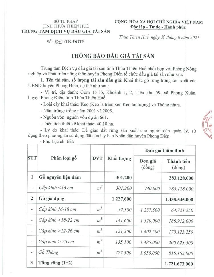 Ngày 24/9/2021, đấu giá quyền khai thác gỗ rừng trồng sản xuất tại tỉnh Thừa Thiên Huế ảnh 3