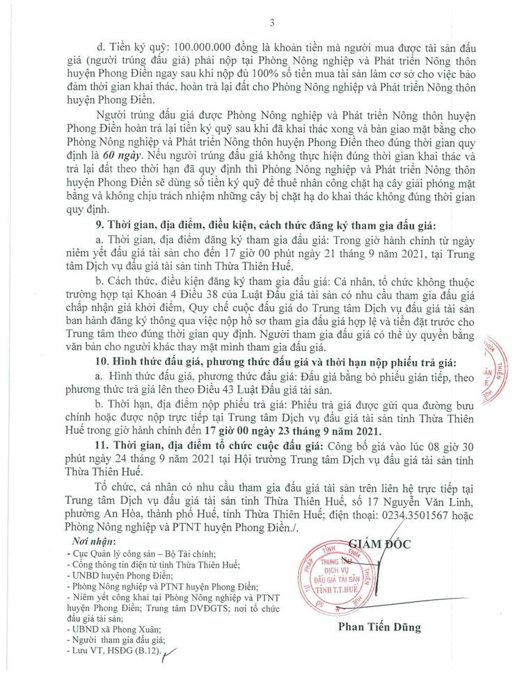 Ngày 24/9/2021, đấu giá quyền khai thác gỗ rừng trồng sản xuất tại tỉnh Thừa Thiên Huế ảnh 5