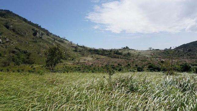 Khánh Hoà: Bộ Công an điều tra khu đất được cấp cho nhiều người tại Nha Trang ảnh 1
