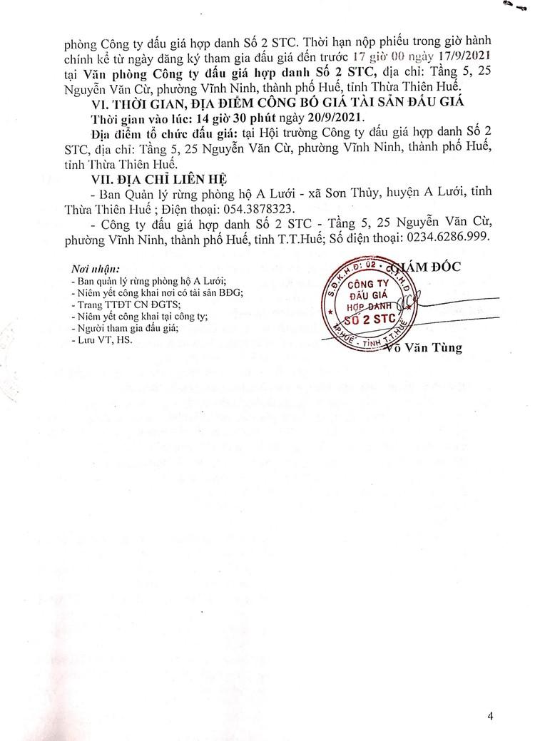 Ngày 20/9/2021, đấu giá khai thác 9,85 ha gỗ rừng trồng sản xuất tại tỉnh Thừa Thiên Huế ảnh 5