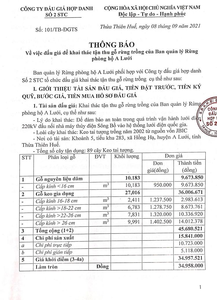 Ngày 20/9/2021, đấu giá khai thác tận thu 89 cây Keo tai tượng tại tỉnh Thừa Thiên Huế ảnh 2