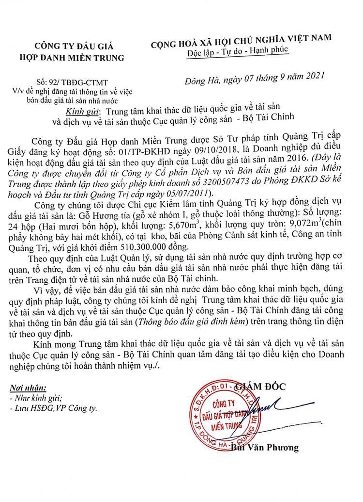 Ngày 24/9/2021, đấu giá gỗ Hương tía tại tỉnh Quảng Trị ảnh 1