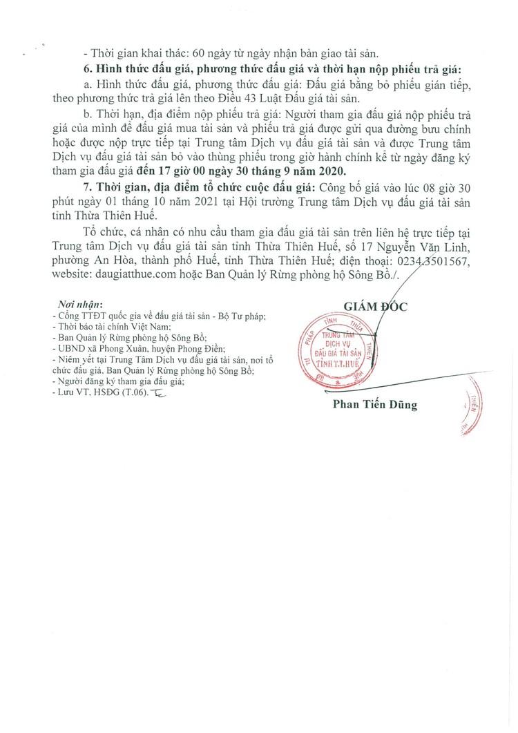 Ngày 1/10/2021, đấu giá khai thác tận thu 49,80 ha gỗ rừng trồng tại tỉnh Thừa Thiên Huế ảnh 5