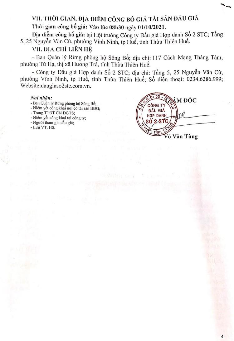 Ngày 1/10/2021, đấu giá khai thác tận thu 36,77 ha gỗ rừng trồng tại tỉnh Thừa Thiên Huế ảnh 6
