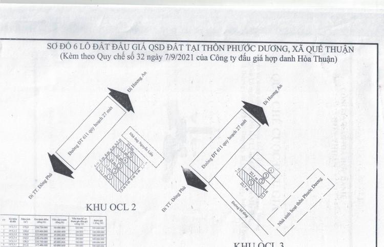 Ngày 30/9/2021, đấu giá quyền sử dụng 6 lô đất tại huyện Quế Sơn, tỉnh Quảng Nam ảnh 4