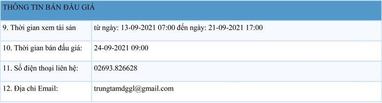 Ngày 24/9/2021, đấu giá tang vật, phương tiện vi phạm hành chính tại tỉnh Gia Lai ảnh 2