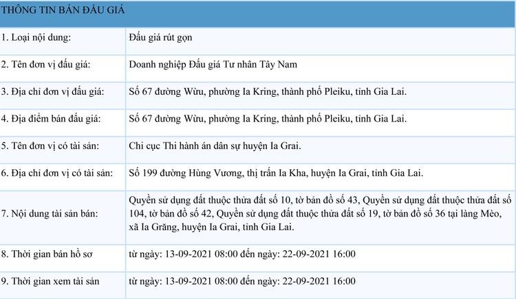 Ngày 24/9/2021, đấu giá quyền sử dụng đất tại huyện Ia Grai, tỉnh Gia Lai ảnh 1