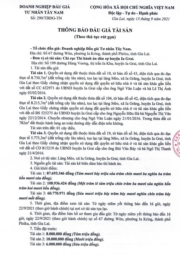 Ngày 24/9/2021, đấu giá quyền sử dụng đất tại huyện Ia Grai, tỉnh Gia Lai ảnh 3