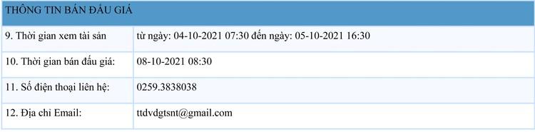 Ngày 8/10/2021, đấu giá giá trị lợi thế quyền thuê 56.741 m2 đất tại huyện Ninh Sơn, Ninh Thuận ảnh 2