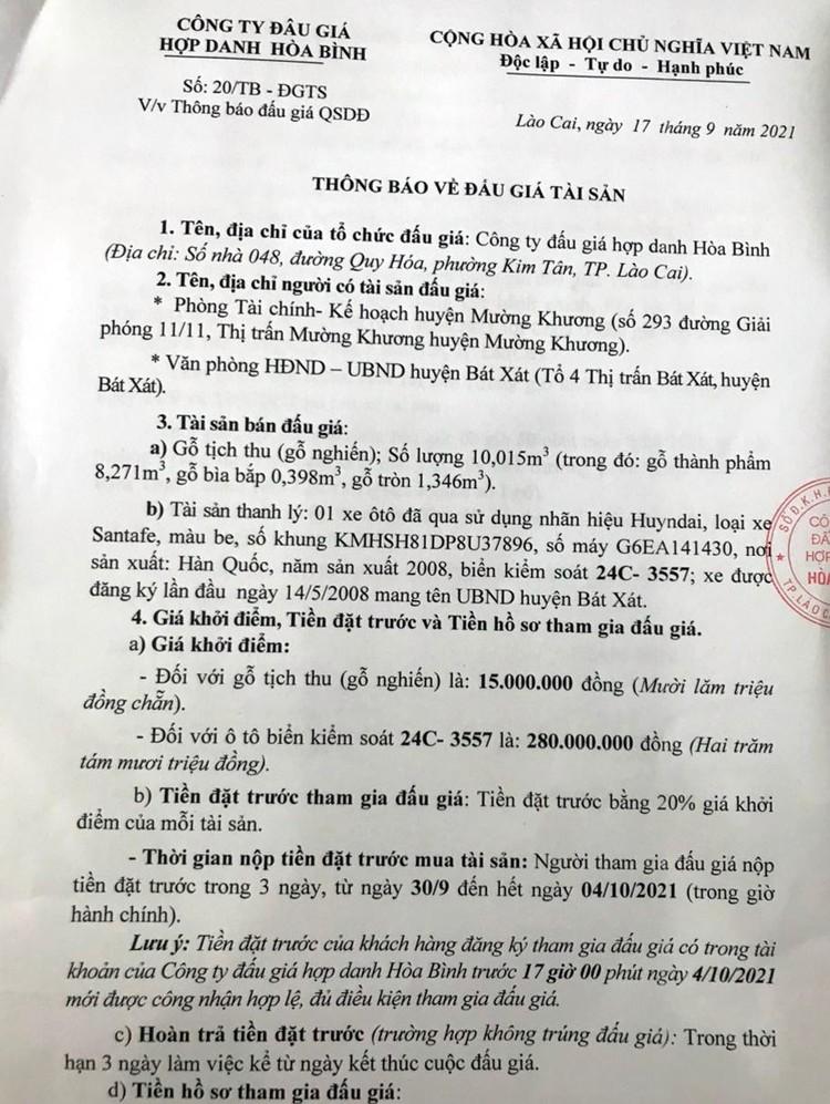 Ngày 5/10/2021, đấu giá gỗ nghiến tịch thu tại tỉnh Lào Cai ảnh 2