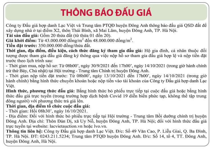 Ngày 16/10/2021, đấu giá quyền sử dụng đất tại huyện Đông Anh, Hà Nội ảnh 1