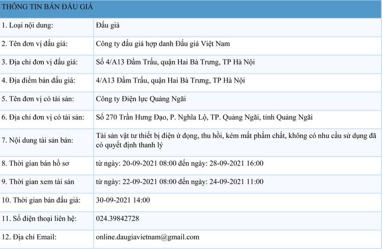 Ngày 30/9/2021, đấu giá vật tư thiết bị điện tại tỉnh Quảng Ngãi ảnh 1
