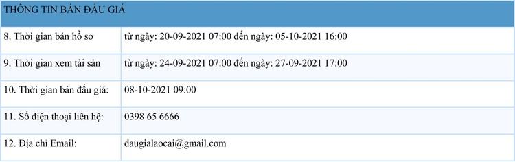Ngày 8/10/2021, đấu giá quyền sử dụng 631,5 m2 đất tại thị xã Sa Pa, tỉnh Lào Cai ảnh 2