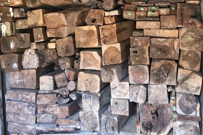 Quảng Trị: Thiết kế hầm xe để vận chuyển gỗ lậu, đá quý trị giá hàng chục tỷ đồng ảnh 1