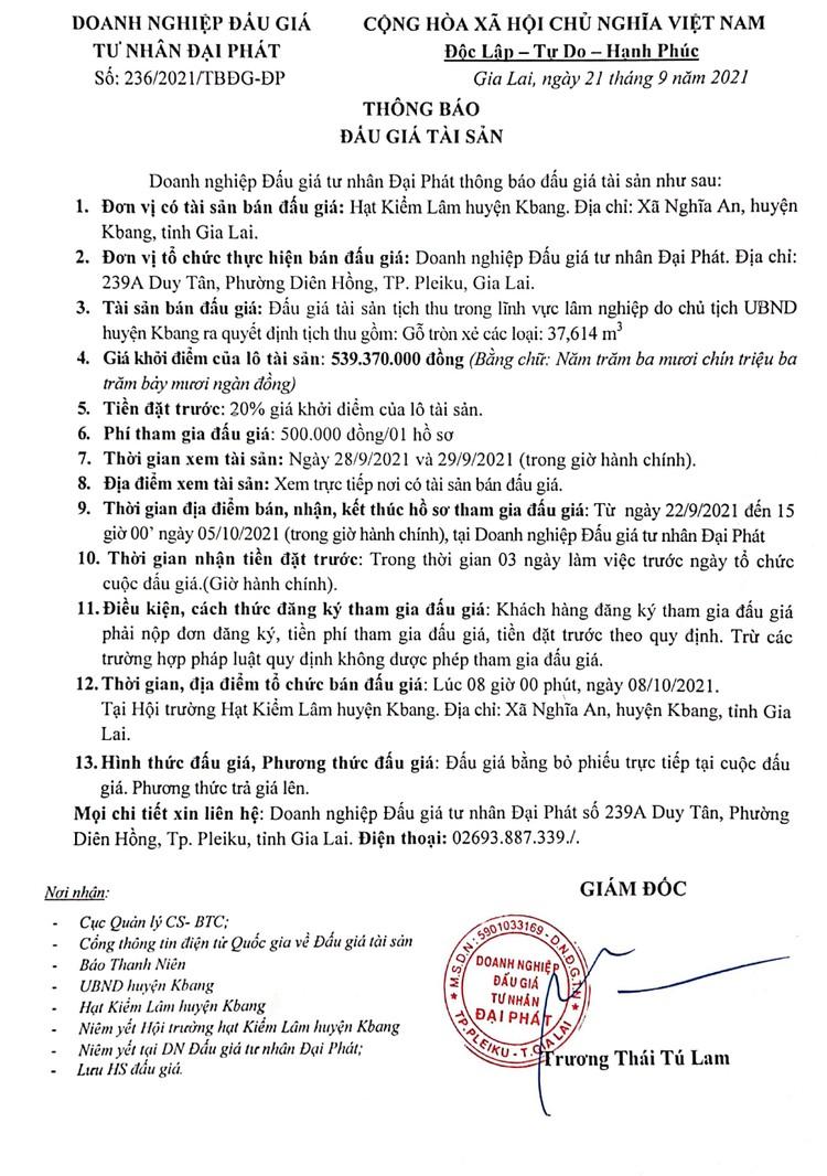 Ngày 8/10/2021, đấu giá gỗ tròn xẻ các loại tại tỉnh Gia Lai ảnh 2