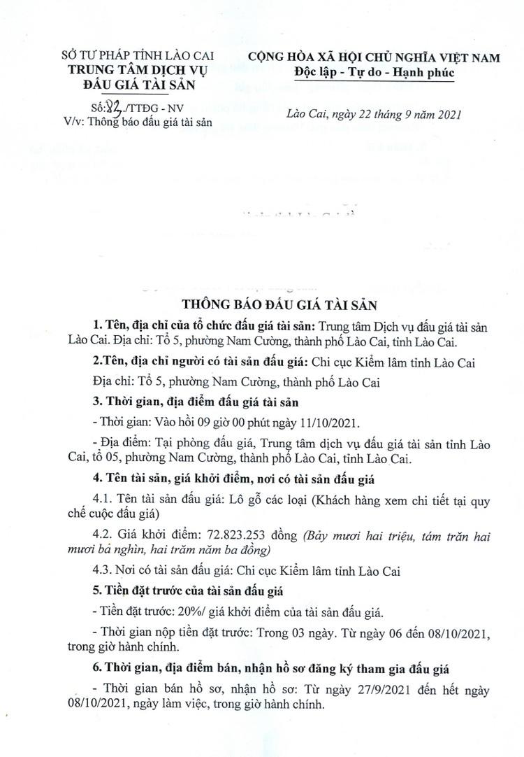 Ngày 11/10/2021, đấu giá gỗ các loại tại tỉnh Lào Cai ảnh 2