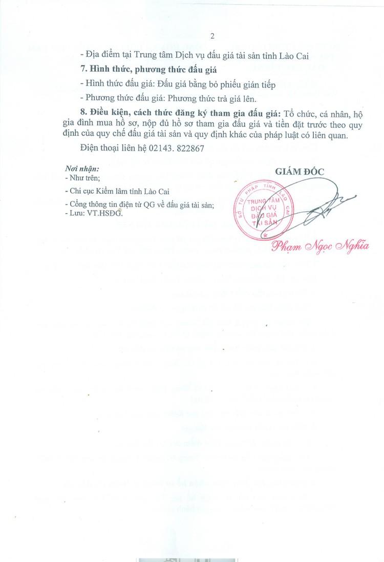 Ngày 11/10/2021, đấu giá gỗ các loại tại tỉnh Lào Cai ảnh 3
