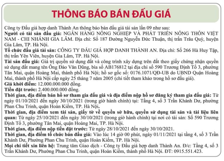 Ngày 1/11/2021, đấu giá quyền sử dụng đất tại quận Hoàng Mai, Hà Nội ảnh 1
