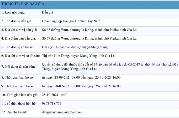Ngày 28/10/2021, đấu giá quyền sử dụng 22.692 m2 đất tại huyện Mang Yang, tỉnh Gia Lai ảnh 1