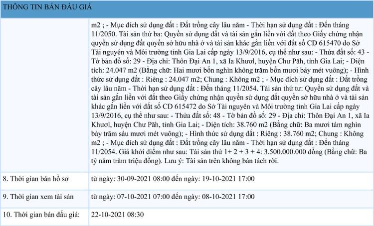 Ngày 22/10/2021, đấu giá quyền sử dụng đất tại huyện Chư Păh, tỉnh Gia Lai ảnh 2