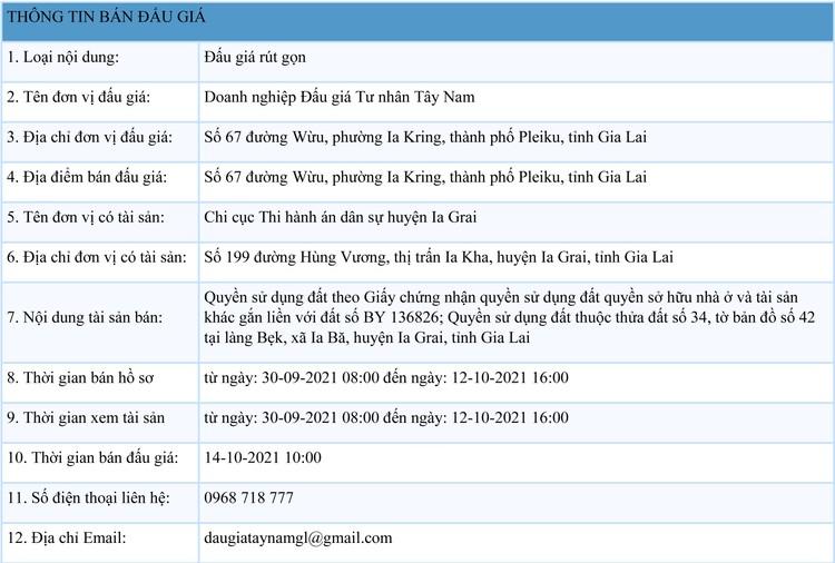 Ngày 14/10/2021, đấu giá quyền sử dụng đất tại huyện Ia Grai, tỉnh Gia Lai ảnh 1