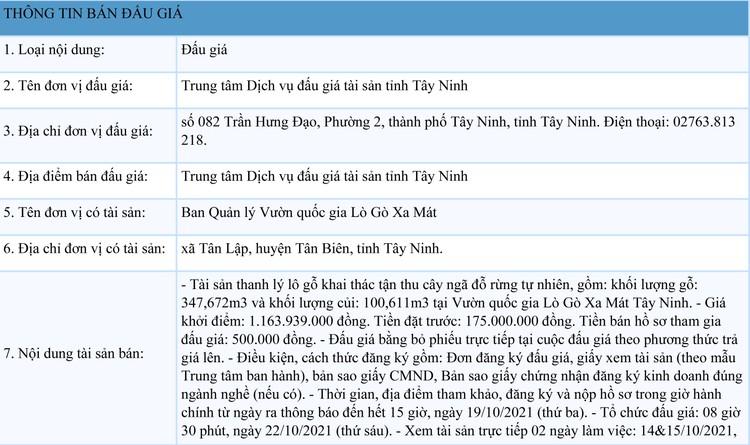 Ngày 22/10/2021, đấu giá lô gỗ khai thác tận thu tại tỉnh Tây Ninh ảnh 1