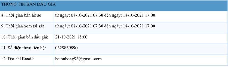Ngày 21/10/2021, đấu giá 01 tàu cá vỏ gỗ tại tỉnh Thanh Hóa ảnh 2