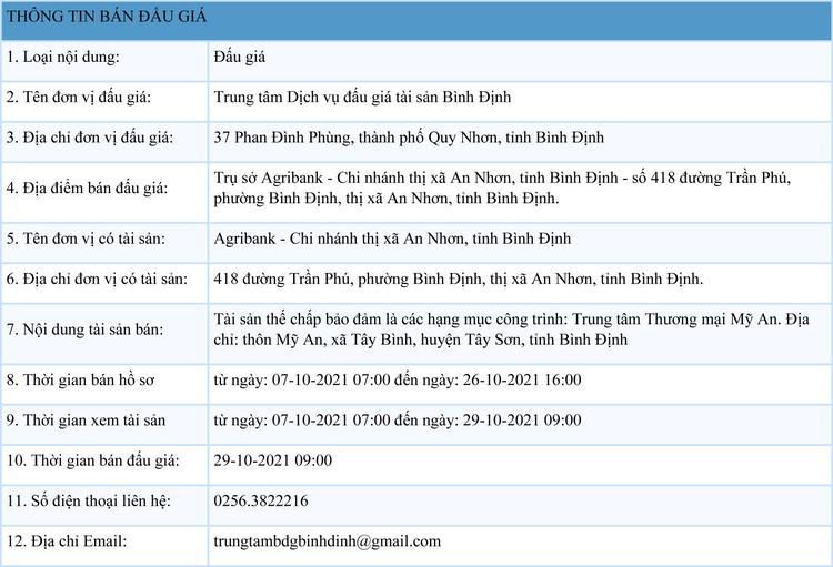 Ngày 29/10/2021, đấu giá các hạng mục công trình tại thị xã An Nhơn, tỉnh Bình Định ảnh 1