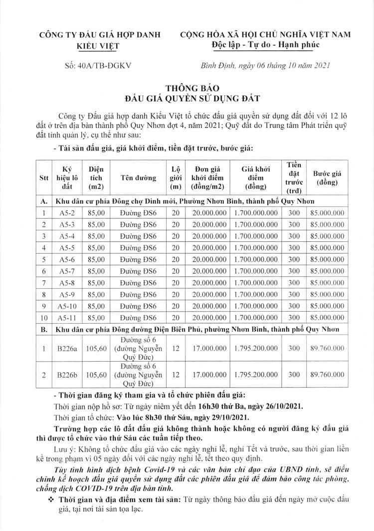 Ngày 29/10/2021, đấu giá quyền sử dụng 12 lô đất tại thành phố Quy Nhơn, tỉnh Bình Định ảnh 2