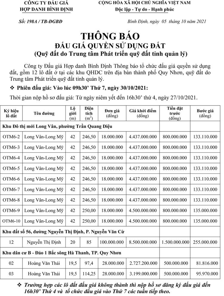 Ngày 30/10/2021, đấu giá quyền sử dụng 12 lô đất tại TP. Quy Nhơn, tỉnh Bình Định ảnh 2