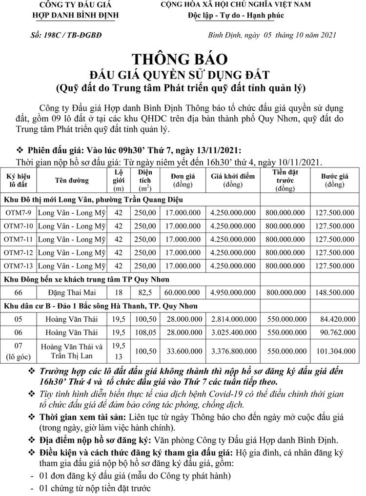 Ngày 13/11/2021, đấu giá quyền sử dụng 9 lô đất tại TP. Quy Nhơn, tỉnh Bình Định ảnh 2